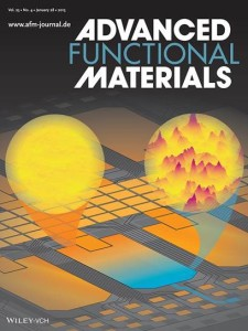 Advanced Functional Materials cover page Jan. 2015.